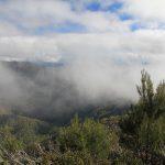 Eagle Peaks 1 day 8