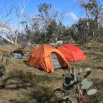 The Crosscut Saw 54 - camp site on Mt Cobbler, day 3
